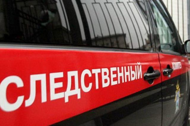 В Тюмени СКР возбудил дело на водителя, насмерть сбившего 7-летнюю девочку