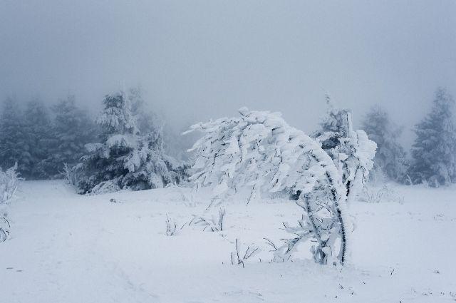 На дорогах гололёдные явления, метели, отложение мокрого снега, усиление ветра до 15-20 м/с.