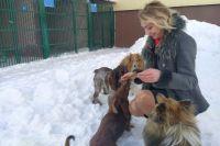 В городе готовят к работе экспертно-запаховую лабораторию и собак-детекторов.