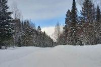 Не только Красноярск, но и Хакасию завалило снегом.