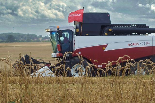 В нашей области урожайность зерновых культур - на уровне Краснодарского края.