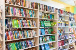 Правительство утвердило правила поддержки социально значимой литературы
