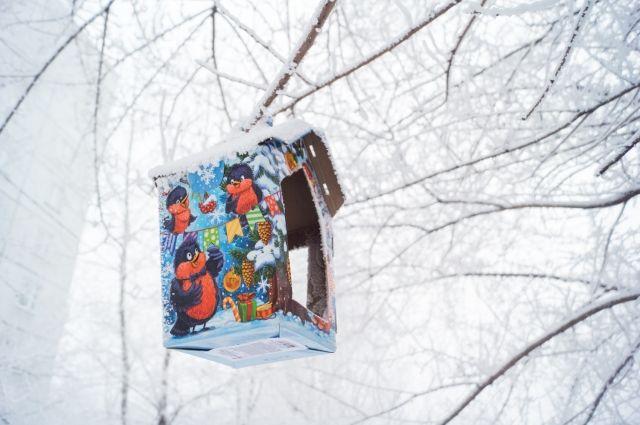 В Москве 23 февраля ожидается до 17 градусов мороза