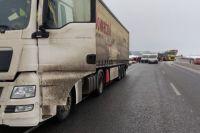 Под Киевом столкнулись пять автомобилей: есть погибшие