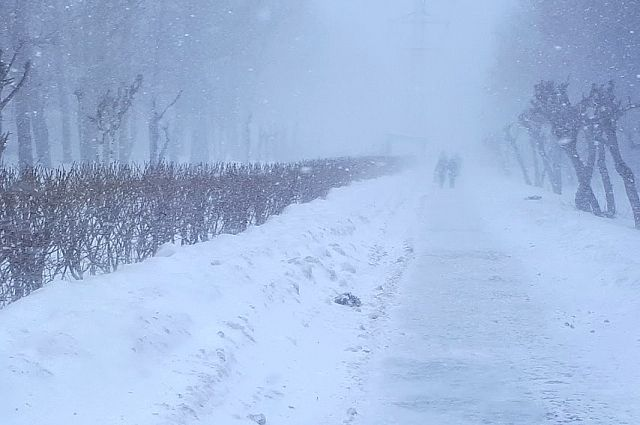 В Тюмени 24 февраля ожидается усиление ветра и метель