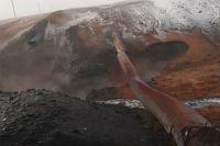 МЧС Оренбуржья сообщило о восстановлении газоснабжения в домах Илекского района после аварии на газопроводе.