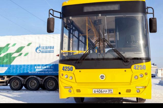 В Ноябрьске вышли на линию первые экологичные автобусы