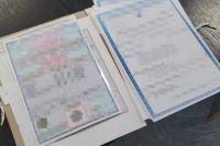 СБУ разоблачила схему незаконного оформления иностранных студентов в вузы.
