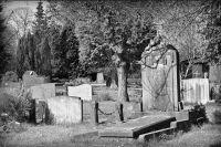 В Оренбурге устроят новое кладбище на 80 тысяч могил.