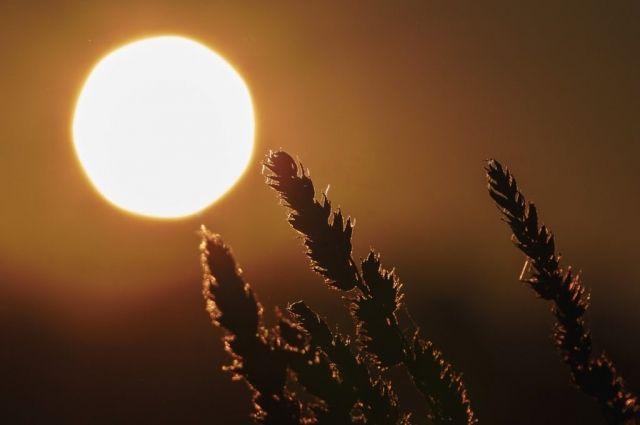 Синоптики дали прогноз погоды на первые дни марта: детали