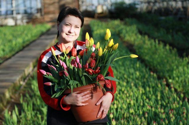 В городе продавать цветы к празднику можно будет по 41 адресу.