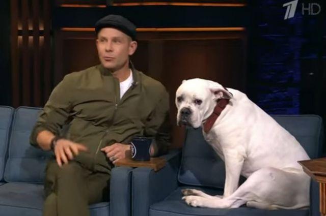 Митя Фомин пришел на шоу с собакой.