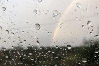 Первый дождь в Новосибирске ожидают 22 марта.