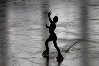 Из ЕГРЮЛ исключили федерацию тенниса, футбола и фигурного катания на коньках.
