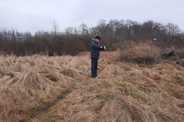 В Калининградской области начались палы травы