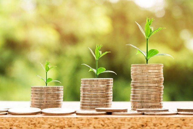 Деньги пойдут на поддержку социальных проектов некоммерческих организаций.