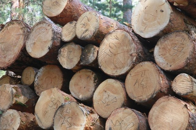 Часть леса вывозилась кругляком, но больше - пиломатериалами.