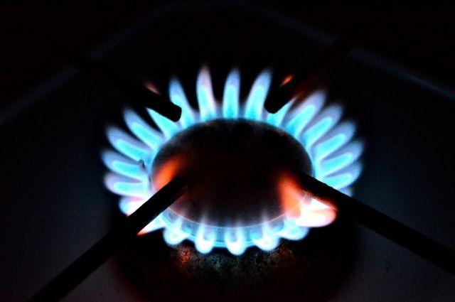 На год вперед. Когда и как могут ввести годовой тариф на газ