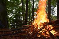 Летом для тушения пожаров будут использоваться 110 единиц техники