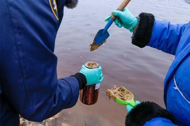 Лесопромышленный комбинат не отрицает факт сброса в Вычегду воды, в которой находилось талловое масло. Но отказывается признавать, что загрязнение оказало негативное воздействие на природу.