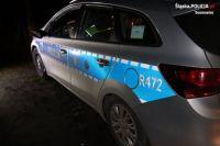 В Польше пьяный украинец угнал автомобиль и пытался уйти от полиции.