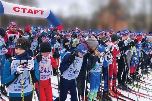Если планы региональных властей воплотятся в жизнь, то начинающие брянские лыжники смогут тренироваться не только зимой, но и летом.