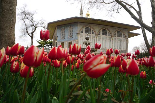 Багдадский павильон в саду дворца Топкапи в Стамбуле.