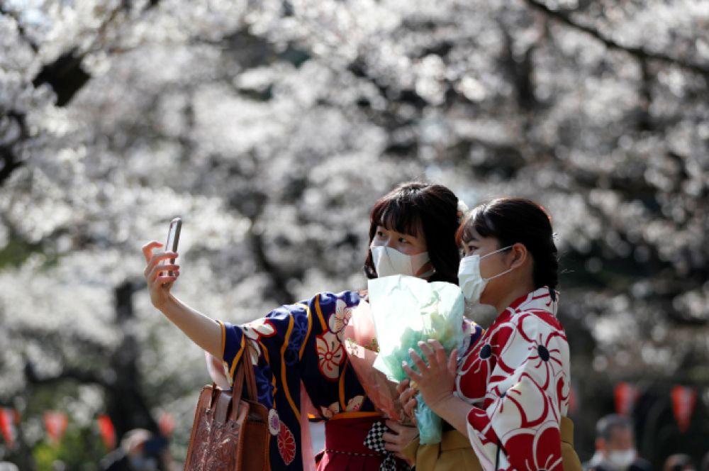 Японцы часто приходят на «ханами» в кимоно.