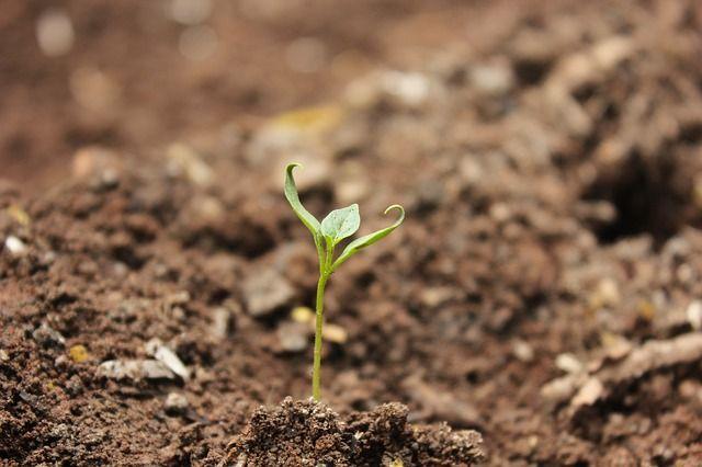 Прокуратура начала проверку из-за разлива газоконденсата на почву