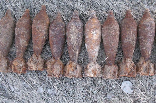 Сапёры Балтийского флота обезвредили 55 боеприпасов времён ВОВ