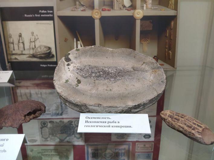 Отпечаток древней рыбы на камне.