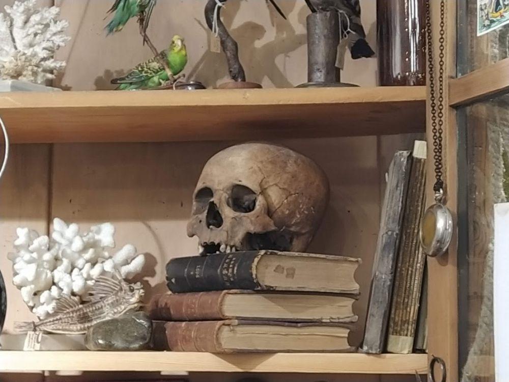 В кабинете редкостей выставлены черепа человека тагарской культуры. Найдены они были в курганах на территории Хакасии и Красноярского края. Умерли эти люди, скорее всего, не своей смертью.