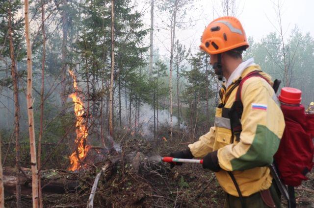 С возгорания сухого мусора и травы может начаться большой пожар.