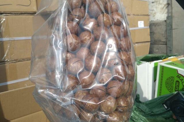 На границе в Оренбургской области задержали 14 тонн австралийской макадамии с двойной маркировкой.