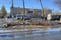 В Оренбурге на проспекте Дзержинского уложили переправу из веток.