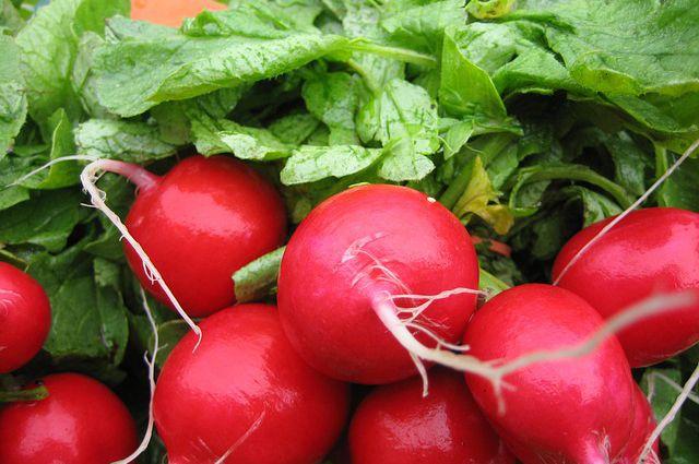 Редис — хрустящий корнеплод с острым вкусом.