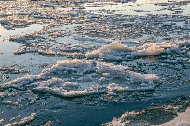 В реке Тосна поднялся уровень воды – МЧС