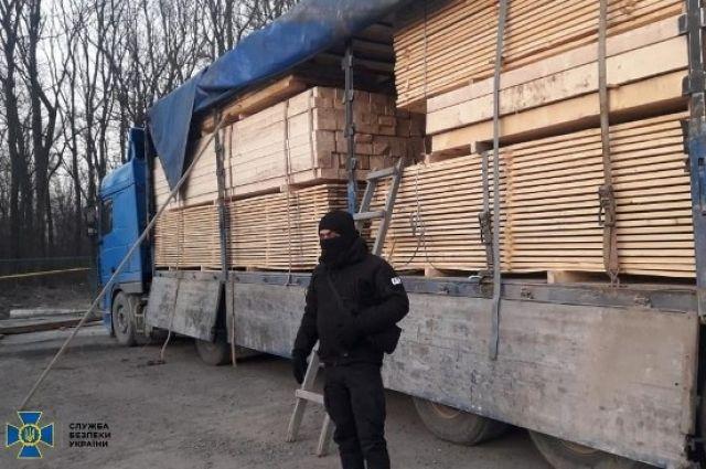 СБУ разоблачила незаконную схему экспорта древесины.