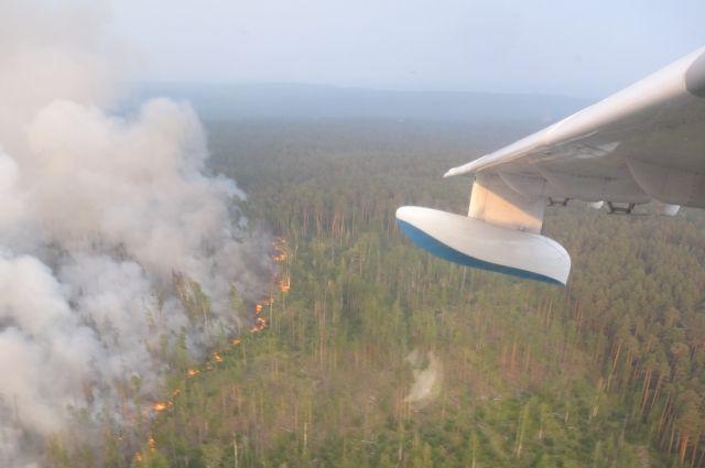 В восточных районах края охранять леса будут 220 огнеборцев.