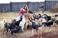 Сейчас в приюте у Полины Кефер более 200 собак, и для каждой она надеется найти хозяина.