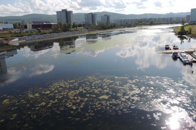 Экологи обеспокоены будущим водных объектов.