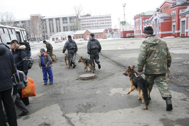 Как сообщают в краевом ГУ МВД, сообщения о минировании школ в Красноярске были анонимными.