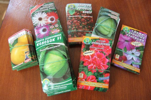 Граждане республики Беларусь, которые пытались поставить некачественные семена, привлечены к административной ответственности.