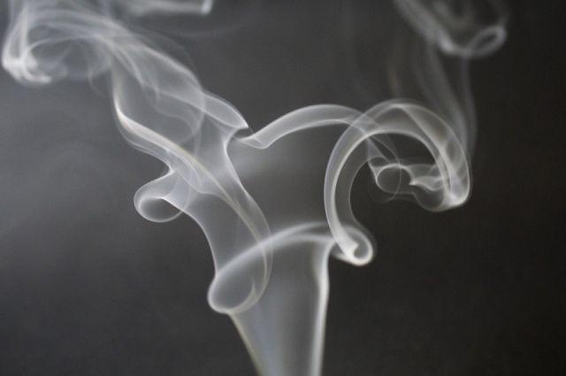 Жителей Брянска обвиняют в незаконном производстве табака для кальянов