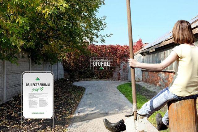 Аренда земли на общественном огороде будет бесплатной, но на ней придётся работать.