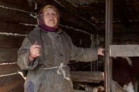 На 71-летнюю Любовь Потапову завели дело о незаконном хранении наркотиков.