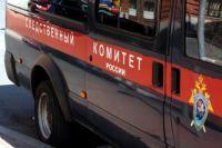 Житель Тюменской области обвиняется в убийстве матери