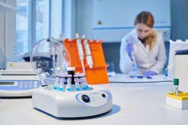Синтетические молекулы «находят» раковые клетки, связываются с ними и наглядно показывают наличие – подсвечивая пораженные участки под излучением.