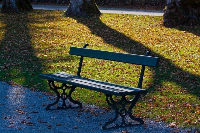 В парке планируется создать смотровую площадку,  прогулочные дорожки,   беседки и арт-объекты