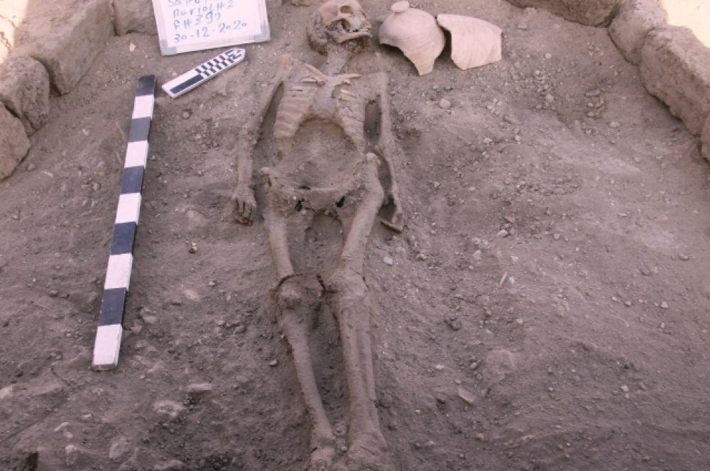 Человеческий скелет, найденный при раскопках.